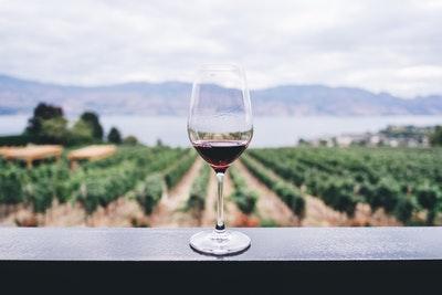 ワインの酸化防止剤は悪い?頭痛とは関係ない?に答えます。