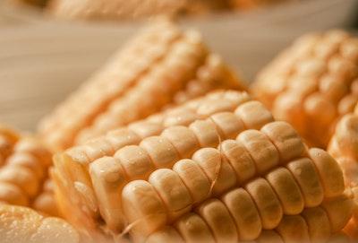 実は日本中に溢れている遺伝子組み換え食品!知らない人が多すぎます。